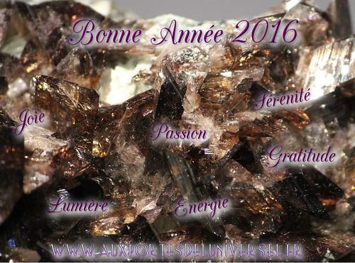Vœux 2016 de la boutique ésotérique en ligne Aux Portes de l'Universel