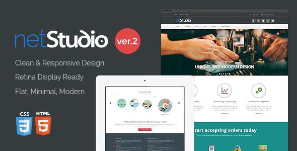 Themeforest NetStudio - Bootstrap 3 Multi-Purpose Template