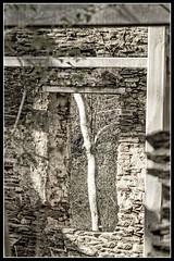 Framed Arbor