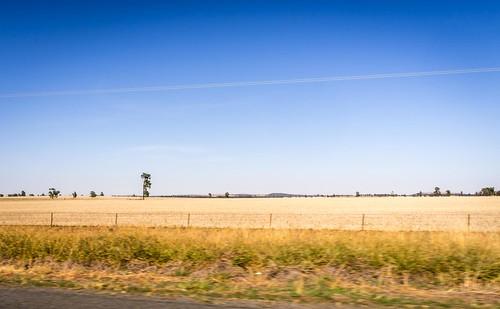 Parkes to Melbourne Road Trip-18