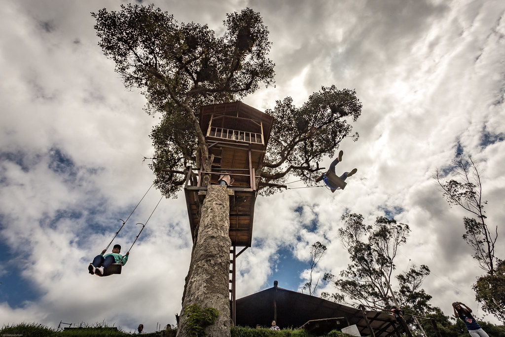 the spectacular swing at la casa del arbol