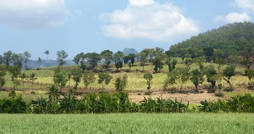 P16-Negros-San Carlos-Dumaguete-Route (37)