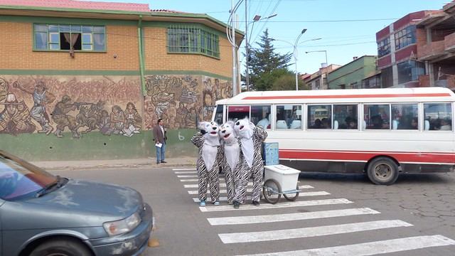 Des zèbres pour apprendre aux enfants à traverser la route, partout dans Potosi