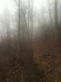 A very misty Easter Sunday