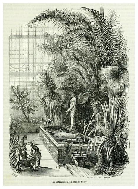 002-Gran invernadero-Le jardin des plantes description et murs des mammifères de la Ménagerie..1863-  Boitard Pierre