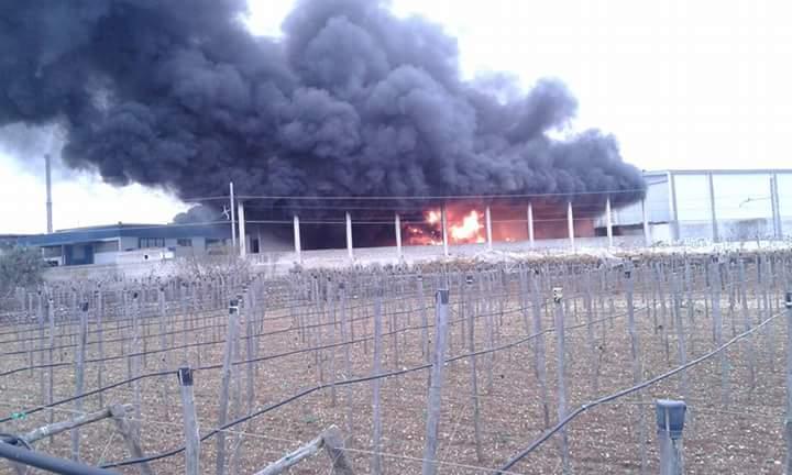 Rutigliano- Incendio zona Pip Via Conversano (2)