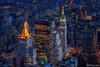 Vista del Bajo Manhattan desde el Empire State Building (NYC)