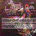 """""""Interdimensional Matter"""" by jacobrendell"""