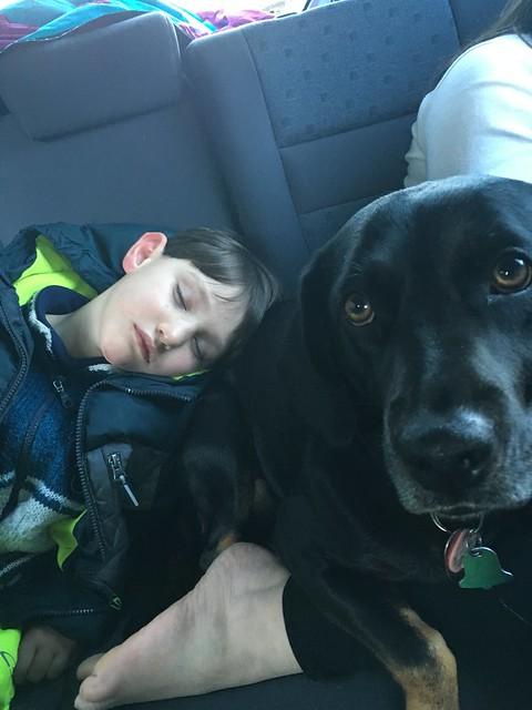 A Boy's Best Pillow