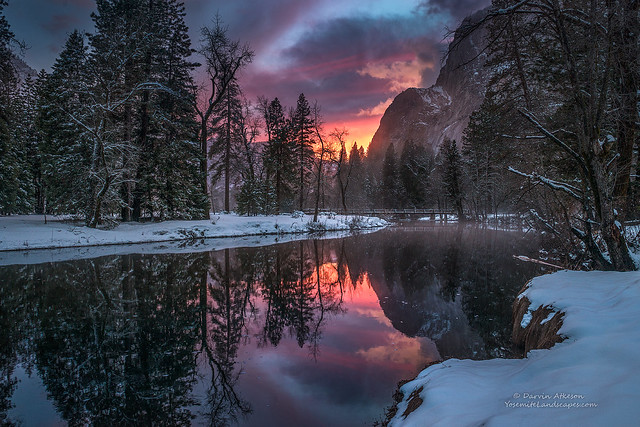 Meadows Edge - Yosemite National Park