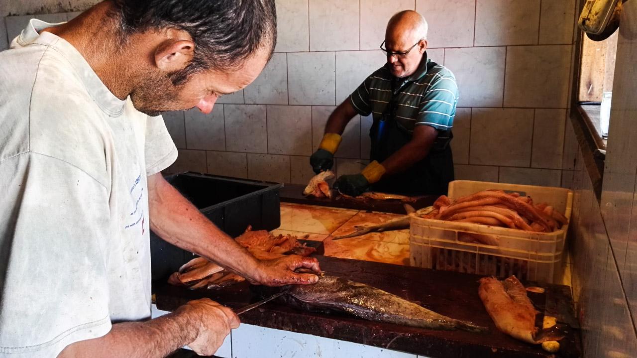 Pescadores de Punta del Diablo trabajando en la limpieza de los peces, para la venta, tan pronto llegan de la jornada de pesca. (Fotografía tomada con un smartphone Huawei P8, Elton Núñez)
