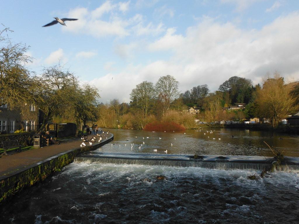 River Wye 2