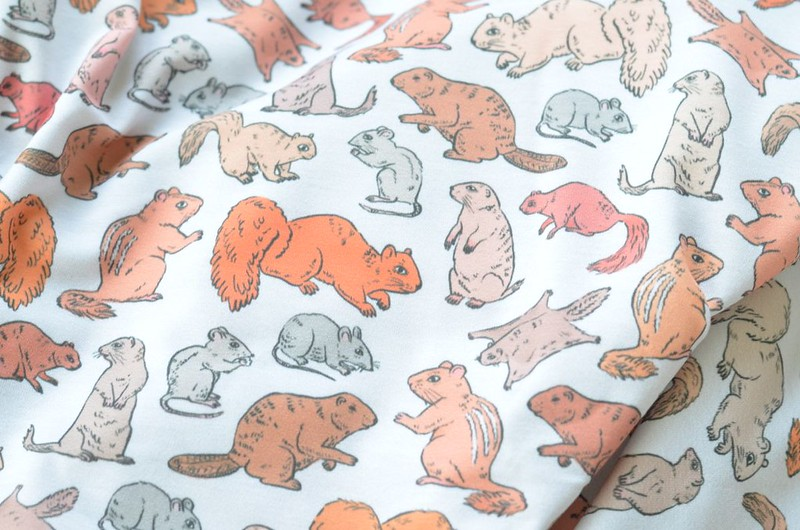 Rodents / Gnawers Fabric