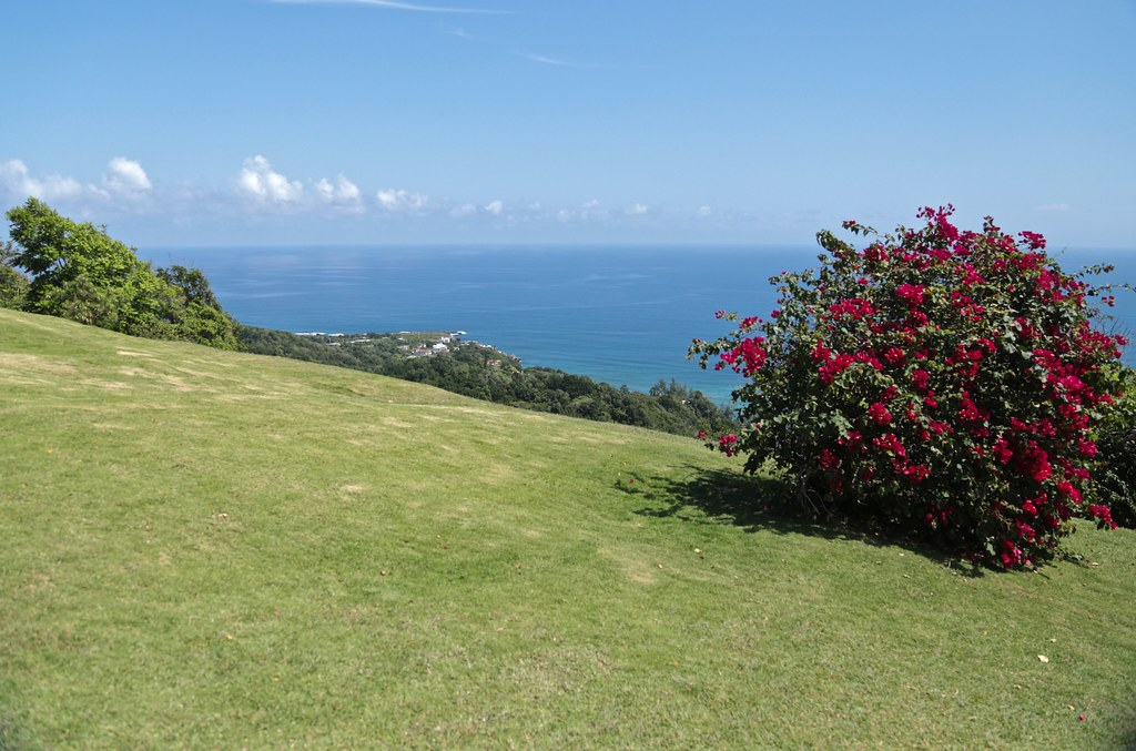 Caribbean View ~ Noel Coward's Firefly Estate
