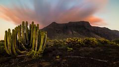 Malpais de Teno - Tenerife, Canary Islands, Spain
