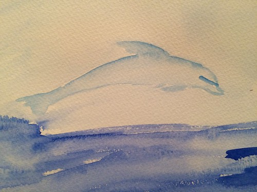 Dolphin water colour