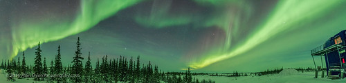 Twin Curtains of Aurora Panorama