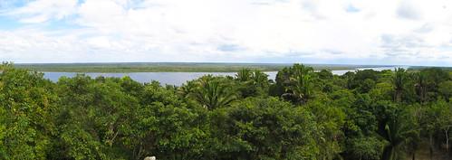 Lamanai: vue sur la New River depuis le Grand Temple