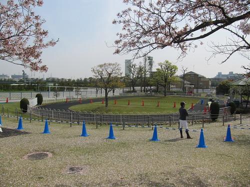 阪神競馬場,ポニーリンク