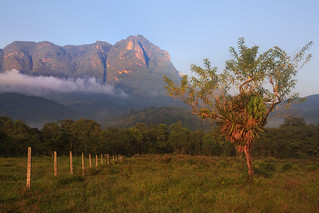 Countryside and Marumbi mountain  in Paraná State - Brazil