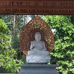 Buda saluda