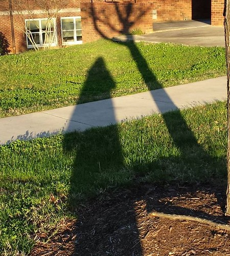 My shadow and its shadow friend