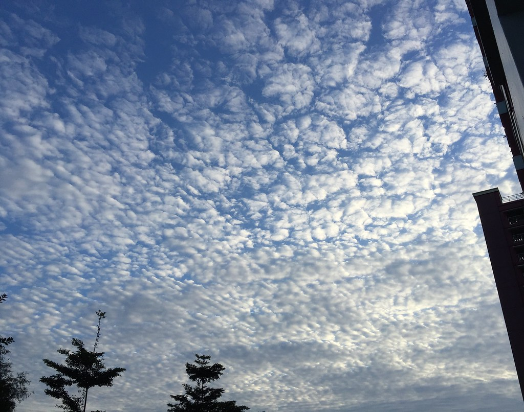 Clouds on 12 Jan 2016 Morning