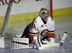 Heat Hockey AHL