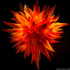 20160206 5DIII Chihuly Garden and Glass 39