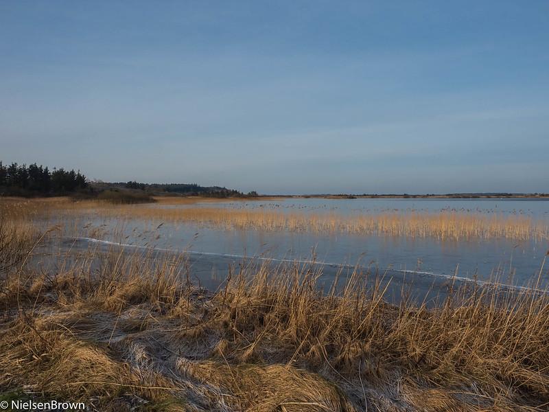 Icy Ræhr Sø