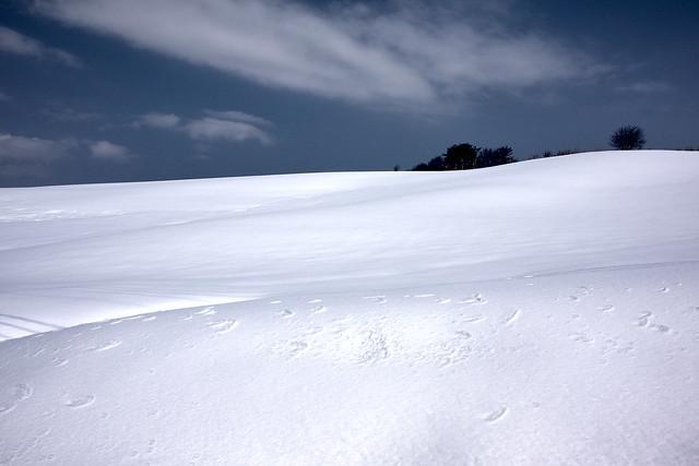 nagameyama