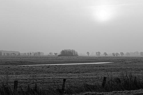 Wintermorgen in Schleswig-Holstein