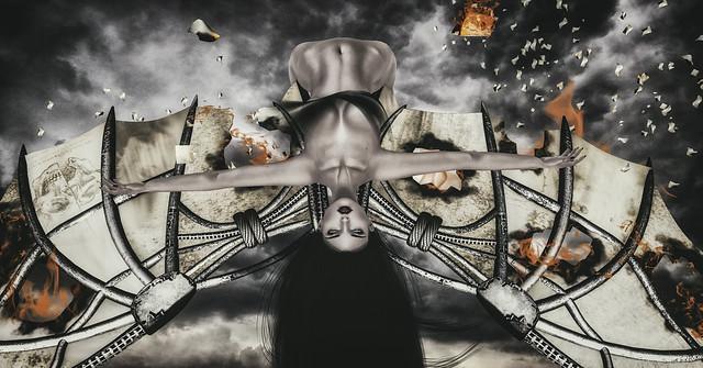 Bauhaus Movement - Da Vinci's Demons Wings @TLC