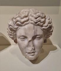 Head Of Apollo  [replica]
