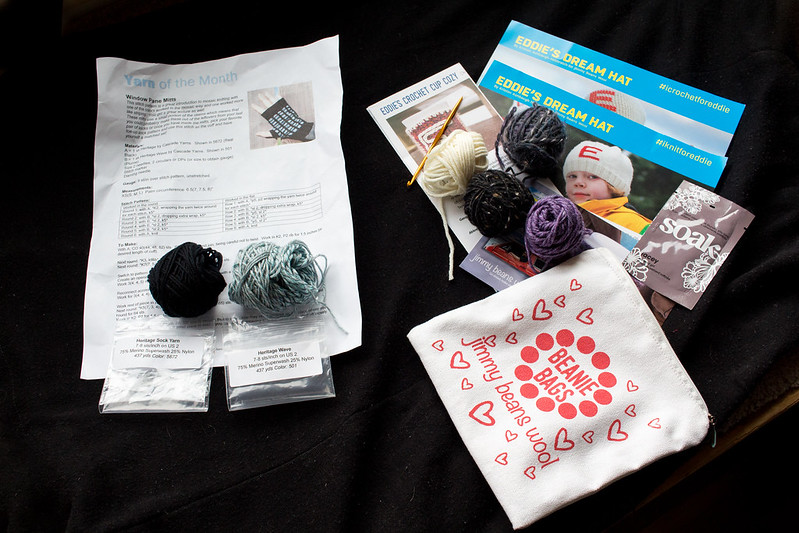 Yarn Subscription preview, February 2016 (Yarn of the Month and Jimmy Beans Beanie Bags)