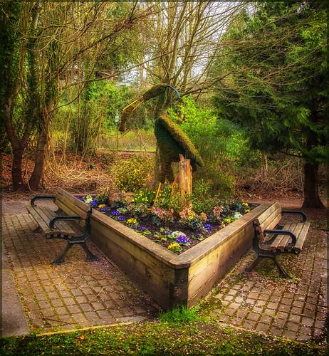 canada green bc surrey crescentbeach springflowers hbm martinsmith southsurrey heronpark happybenchmonday nikkor2485mmf3545gedvr nikond750 ©martinsmith