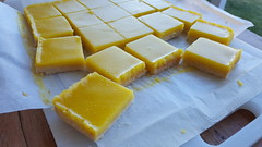 Meyer Lemon Curd Bars