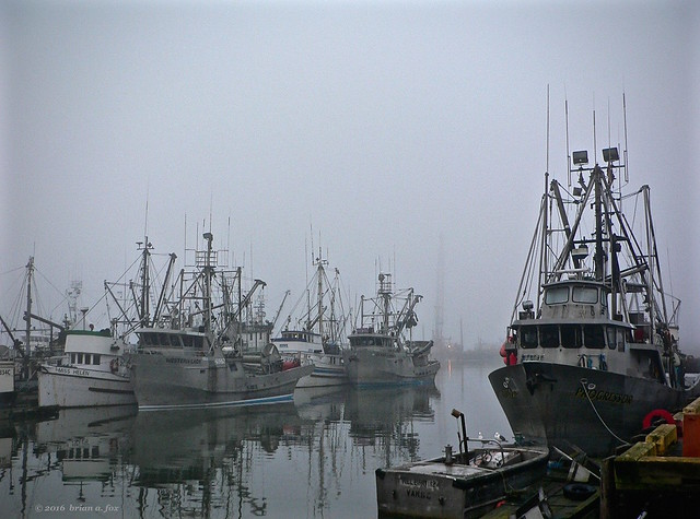 [Explore] The Misty Harbour, Panasonic DMC-FZ3