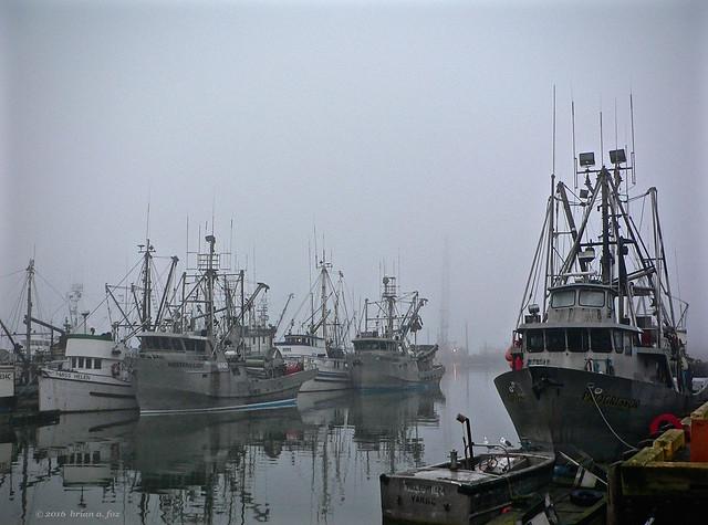 [Explore] The Misty Harbour, Panasonic DMC-FZ3