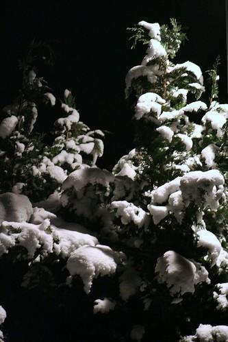 Sne i gadebelysning