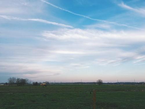 #landscape #vsco