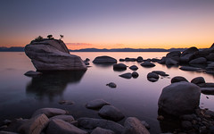 Shores of Tahoe