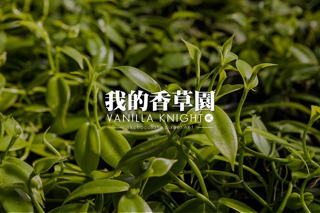 【香草莢、香莢蘭】甜點的秘密!台灣也有香草園(自栽香草莢)@香草騎士