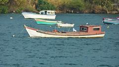 Fishing Boats near Panama City