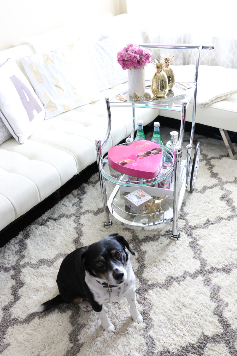bar-cart-home-style-living-room-dog-3