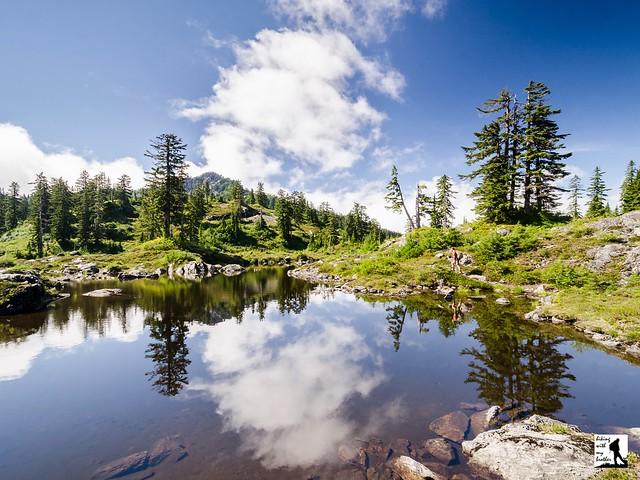 Walt Bailey Trail