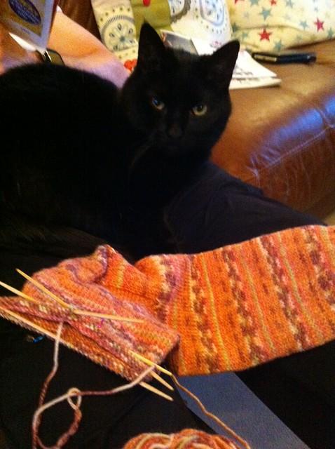 more sock