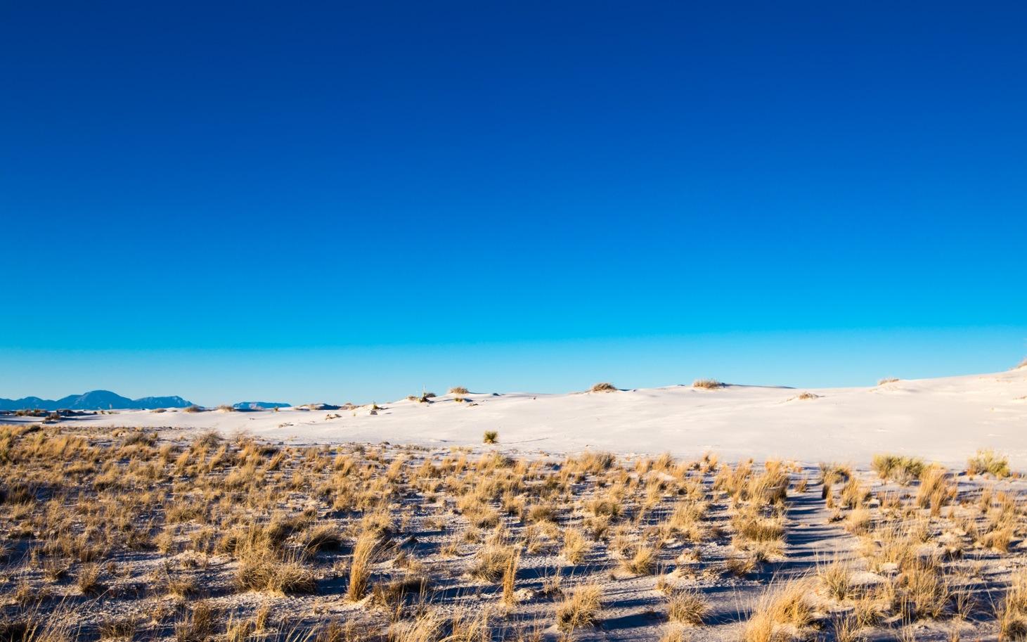 White Sands-1493