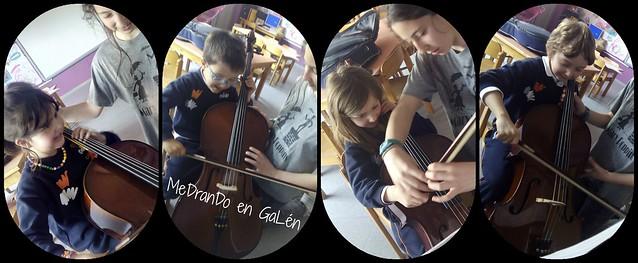 violoncello 3