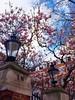 Spring in London - Original